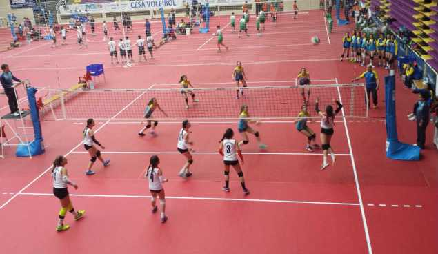 Asturias Castilla La Mancha Voleibol Infantil 4